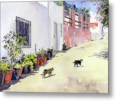 Village Street With Cats In Hortichuelas Metal Print