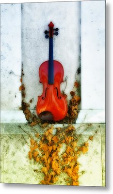 Vines And Violin Metal Print by Bill Cannon