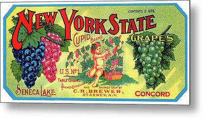 Vintage Concord Grape Packing Crate Label C. 1920 Metal Print