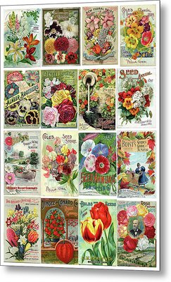 Vintage Flower Seed Packets 1 Metal Print by Peggy Collins
