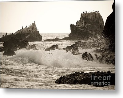 Vintage Laguna Beach Cove Metal Print by Lillian Michi Adams