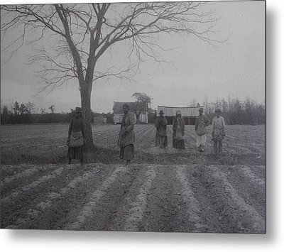 Vintage Photograph 1902 New Bern North Carolina Sharecroppers Metal Print