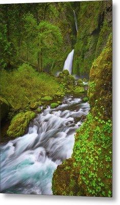 Metal Print featuring the photograph Wahclella Falls by Darren White