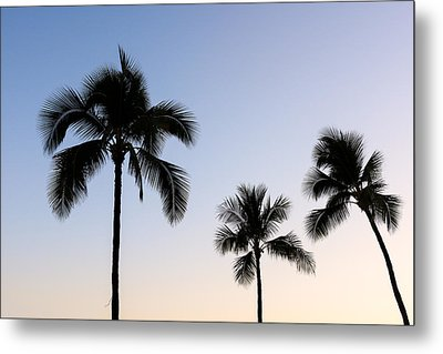 Waikiki Metal Print by Doug Oglesby