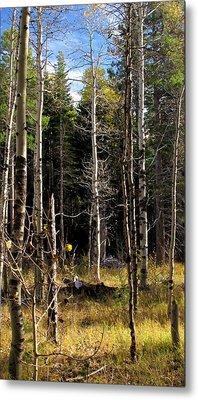 Waiting For Snow Sierra Nevada Autumn Larry Darnell Metal Print by Larry Darnell