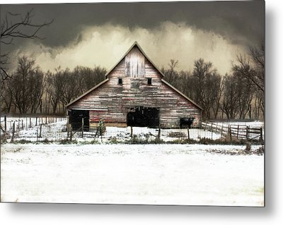 Waiting For The Storm To Pass Metal Print by Julie Hamilton