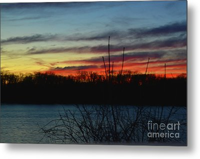 Waiting For The Sun Metal Print by Robyn King
