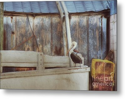 Metal Print featuring the photograph Walking The Plank by Benanne Stiens