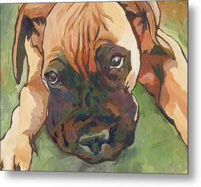 Wanna Play Metal Print by Sandy Tracey