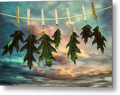 Wash Day Metal Print by Bob Orsillo