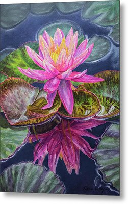 Water Lilies 17 Sunfire Metal Print