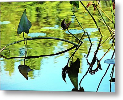 Water Plants Metal Print by Debbie Oppermann