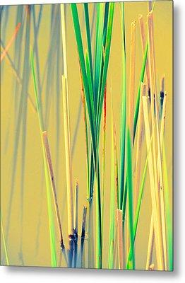 Water Reeds Soft Metal Print by Beth Akerman