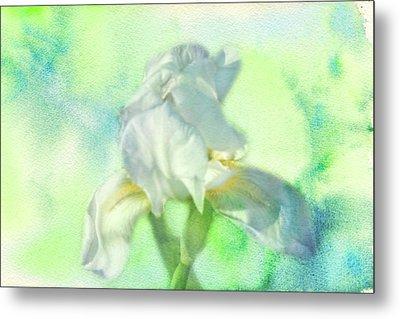 Watercolor Iris Metal Print