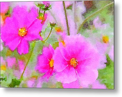 Metal Print featuring the painting Watercolor Pink Cosmos by Bonnie Bruno