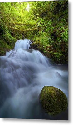 Waterfall At Shepperds Dell Falls Metal Print by David Gn