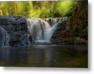 Waterfall At Sweet Creek Hiking Trail Complex Metal Print by David Gn