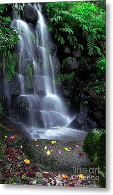 Waterfall Metal Print by Carlos Caetano