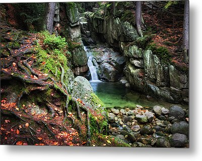 Waterfall In Enchanted Forest Metal Print by Artur Bogacki