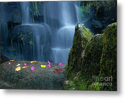 Waterfall02 Metal Print by Carlos Caetano