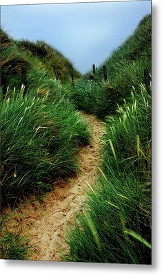 Way Through The Dunes Metal Print