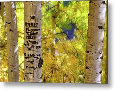 Metal Print featuring the photograph We Lead The Way - Aspens - Colorado - Airborne Ranger by Jason Politte