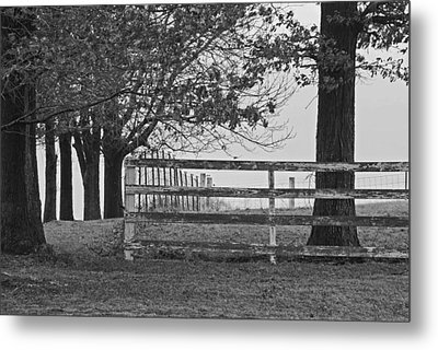 Were You A Bad Oak Metal Print by Michelle Hastings