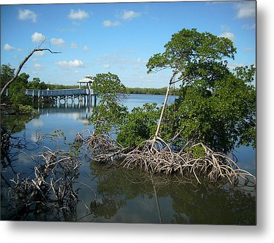 Metal Print featuring the photograph West Lake Park by Artists With Autism Inc