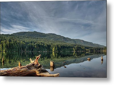 Metal Print featuring the photograph Westwood Lake by Randy Hall