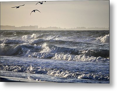 Metal Print featuring the photograph Wet And Wild by John Knapko
