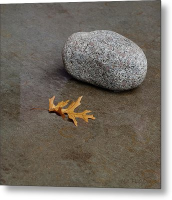 Wet Leaf And Wet Rock Metal Print by Michael Flood