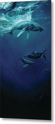 Whalesong Metal Print