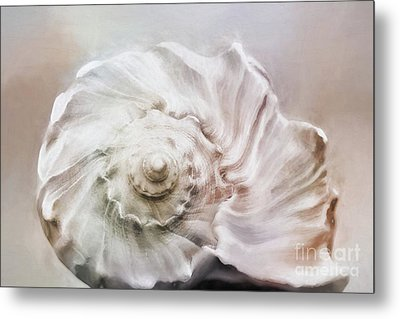 Metal Print featuring the photograph Whelk Shell by Benanne Stiens