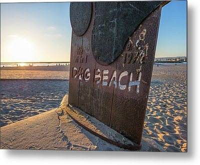 Where's Your Pooch Metal Print by Joseph S Giacalone