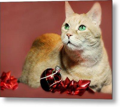 The Christmas Cat Metal Print