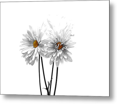 White On White Metal Print by Regina Arnold