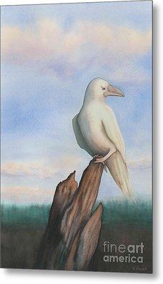 White Raven Metal Print by Anne Havard
