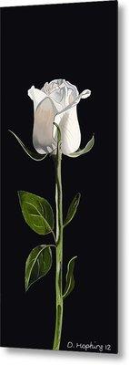 White Rose Metal Print by Darrell Hopkins