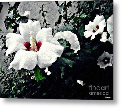 White Rose Mallows 2 Metal Print