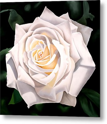 White Rose Metal Print by Ora Sorensen