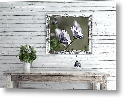 Metal Print featuring the photograph White Timber Cottage By Kaye Menner by Kaye Menner
