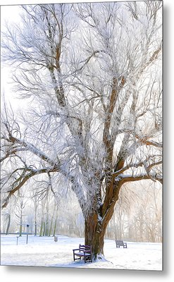 White Winter Tree Metal Print by Svetlana Sewell