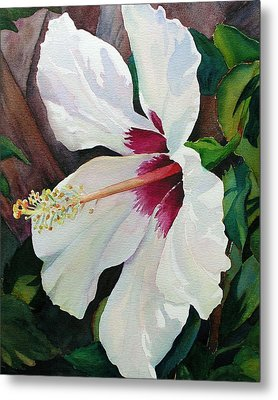 White Wonder Metal Print by Judy Mercer