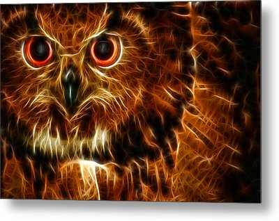 Metal Print featuring the photograph Whoo by Joetta West