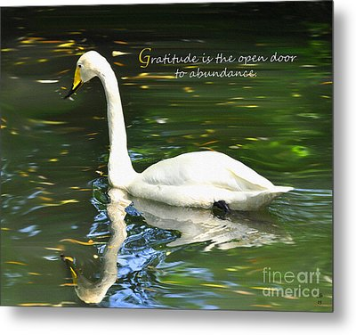 Metal Print featuring the painting Whooper Swan Gratitude by Diane E Berry