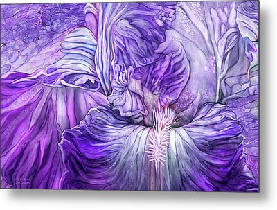 Metal Print featuring the mixed media Wild Iris Purple by Carol Cavalaris