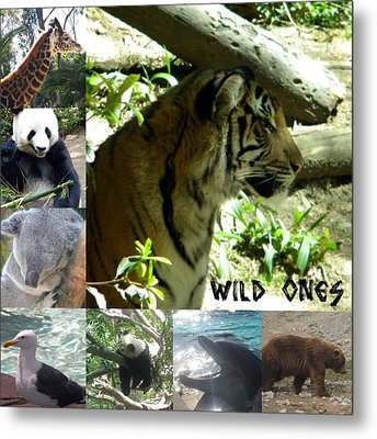 Metal Print featuring the photograph Wild Ones by Amanda Eberly-Kudamik