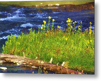 Wildflowers By The River Metal Print by Russell  Barton