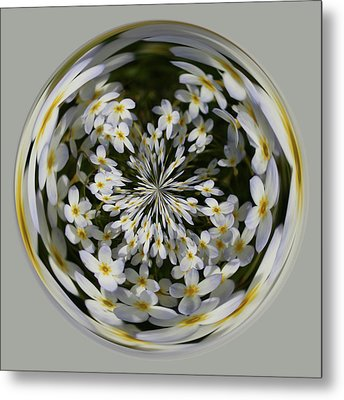Metal Print featuring the photograph Wildflowers Orb by Bill Barber