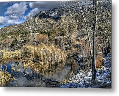 Metal Print featuring the photograph Wildlife Water Hole by Alan Toepfer